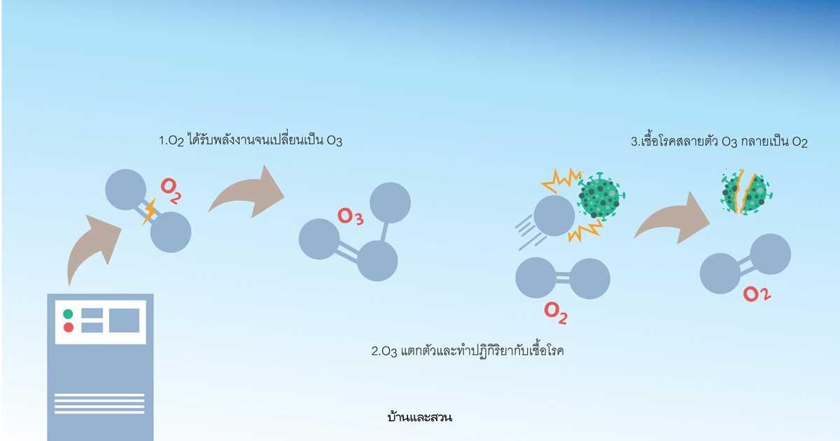 รีวิว เครื่องผลิตโอโซน เพื่อฆ่าเชื้อโรค และดับกลิ่น จากจีน (Ozone Generator 24g/h)